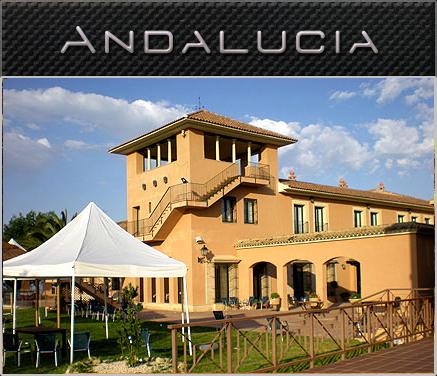 Local Andalucía